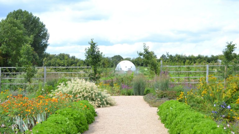Gardens and Dome